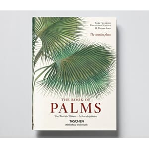Boken The Book of Palms