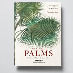 Boken The Book of Palms XL