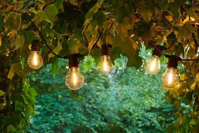 Plante lampe med LED lys | Unik interiør | Lys, Hage fest, Unik