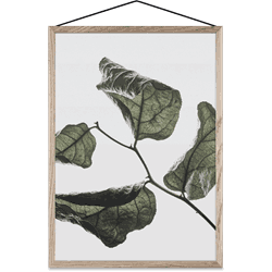 Plakat Floating Leaves 03