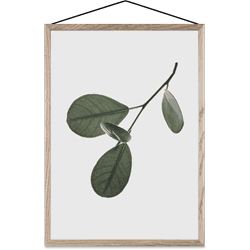 Plakat Floating Leaves 05